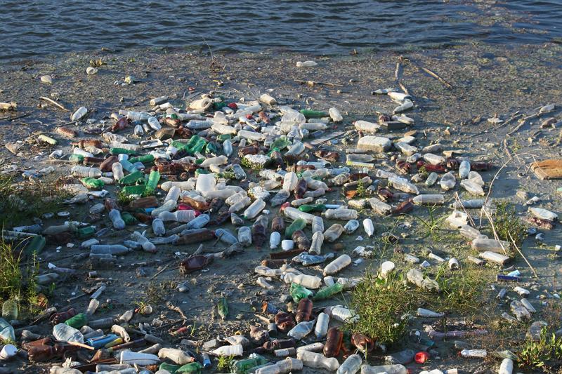 Umweltverschmutzung hat große Ausmaße angenommen - die Natur leidet darunter